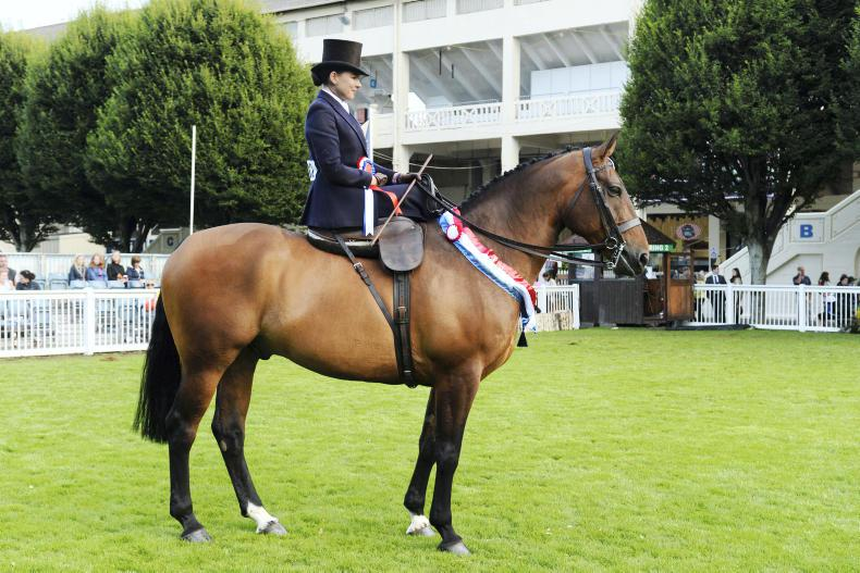 DUBLIN HORSE SHOW 2017:  Sweet win for McKee and Vantage Point