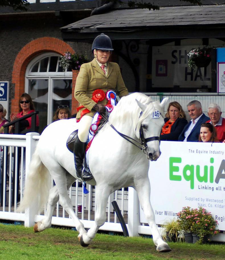 DUBLIN HORSE SHOW 2017:  Supreme honours for Banks Timber