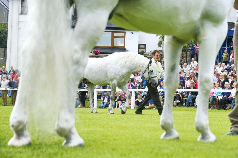 CLIFDEN SHOW 2017: British turn tables in Clifden
