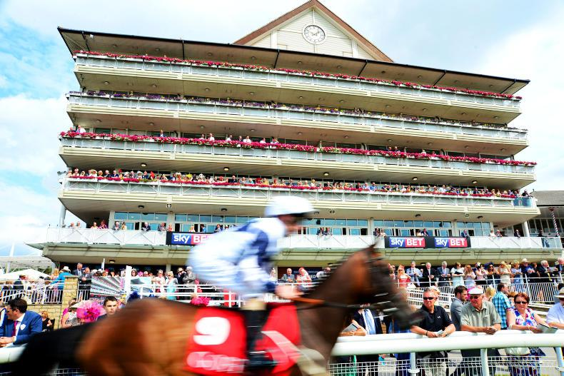 Aidan O'Brien on York weather watch