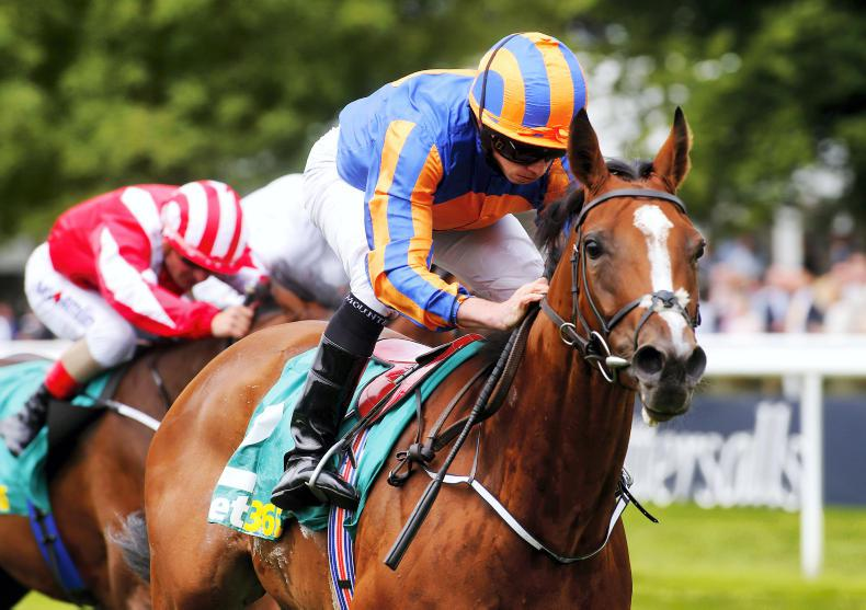 Aidan O'Brien planning strong assault on Moyglare prize