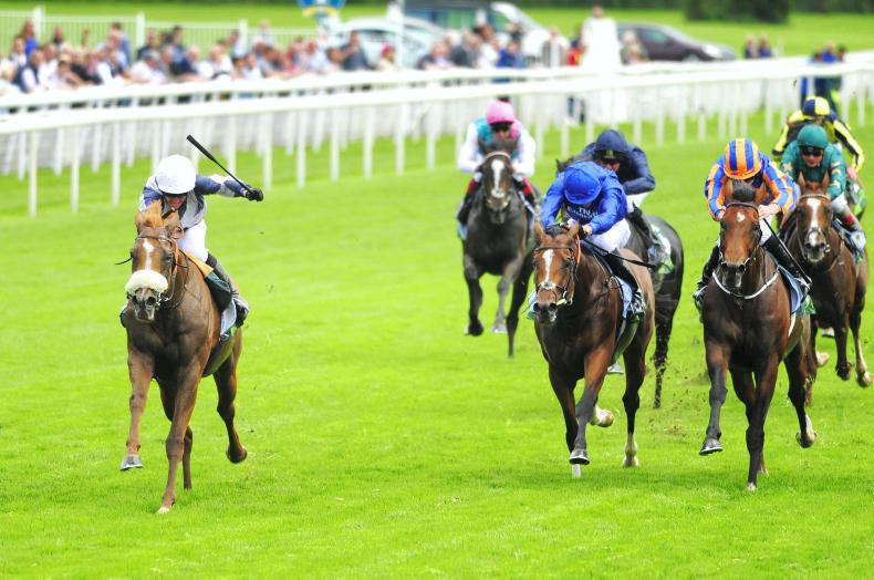 SIMON ROWLANDS: Fast pace tees up Ulysses for excellent timefigure