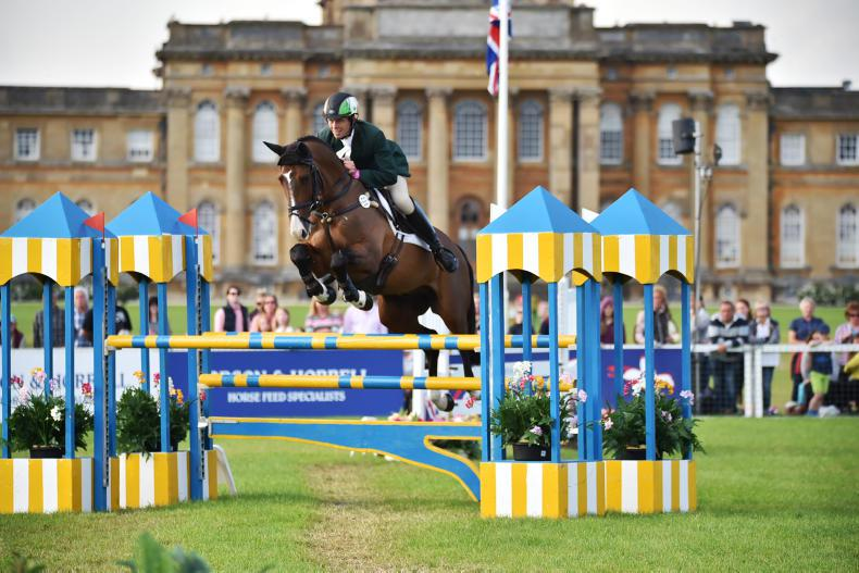 PONY TALES: Blenheim outing is UK first for Jonty and Art