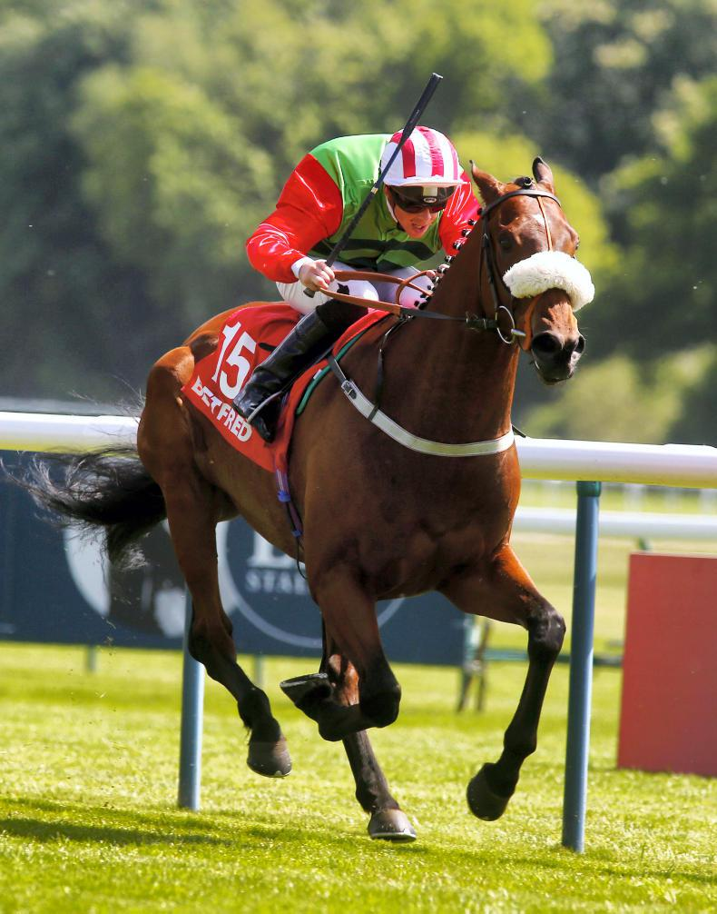 BRITISH PREVIEW: Seamour can reward the York faithful