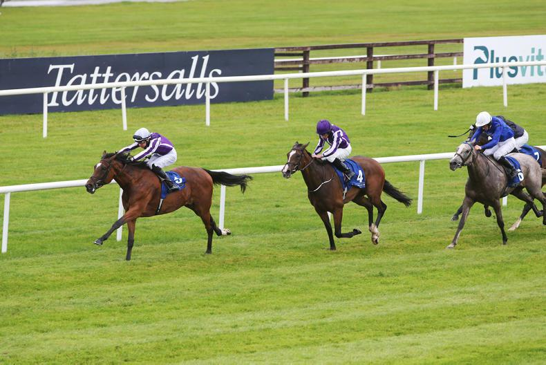 CURRAGH SUNDAY: It's a Magical day for the O'Briens