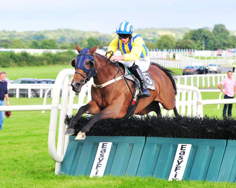 Whiteout stamps her class on Kilbeggan opposition