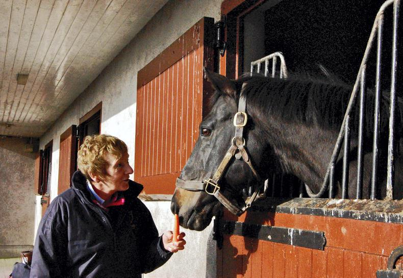 Top National Hunt stallion Presenting dies