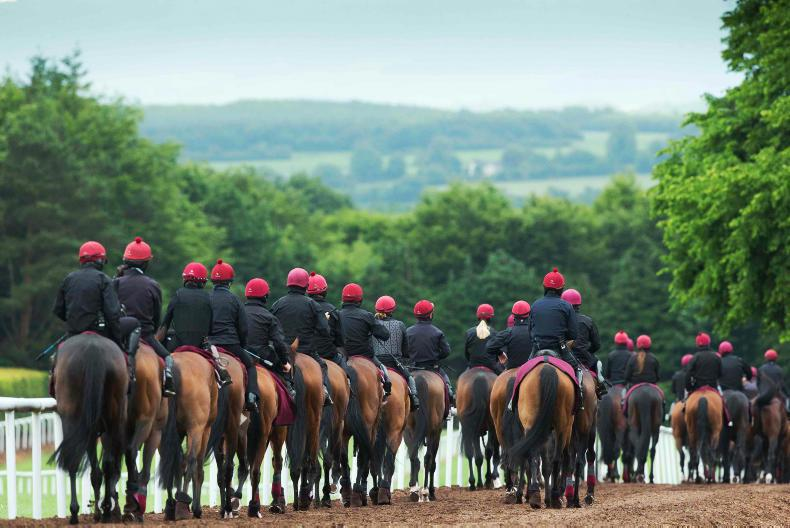 Mystery over racing losing 'agriculture' status for employees