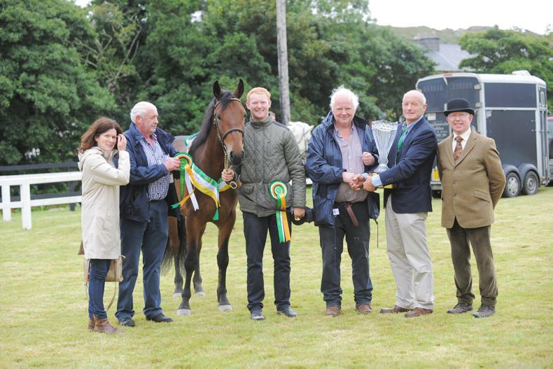 NEWS: Clifden Show a huge boost to local economy