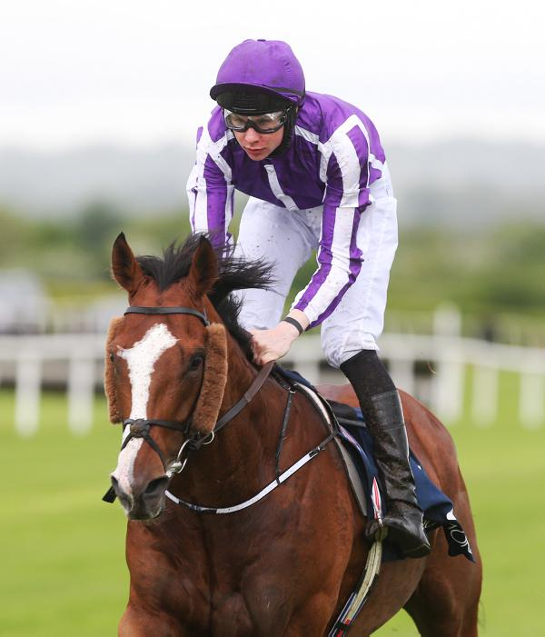 Light is leading to Gold Cup glory