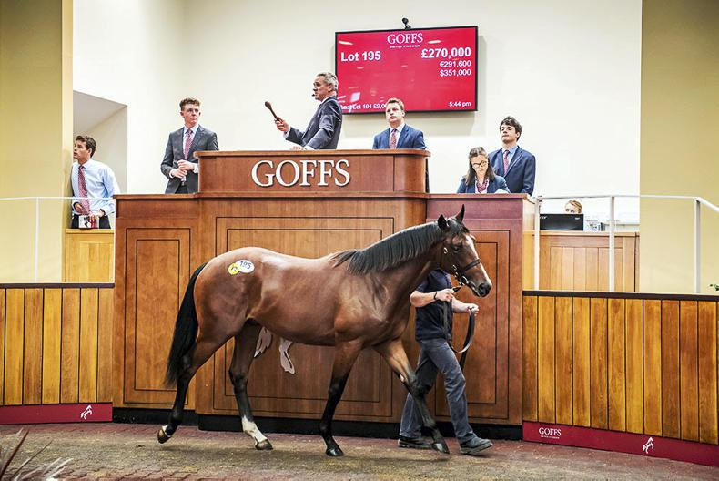 £270,000 Bated Breath colt tops Day One of Goffs UK Premier Yearling Sale