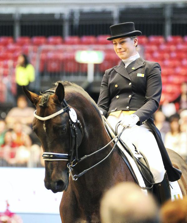 Dwyer loses top dressage horse