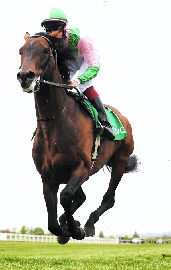 Montjeu magic in Fame And Glory