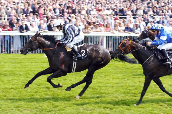 Toormore stands out for Arakan
