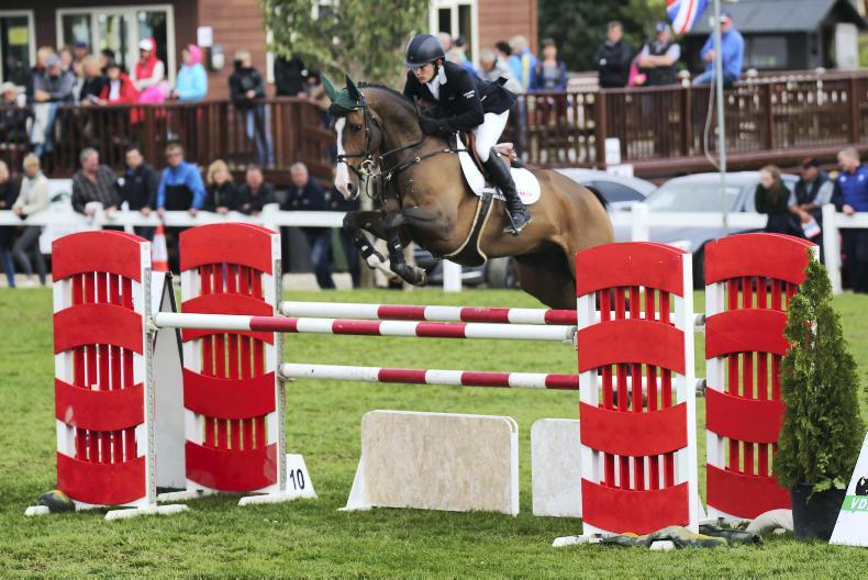 Irish Breeders Classic continues to create demand for Irish horses