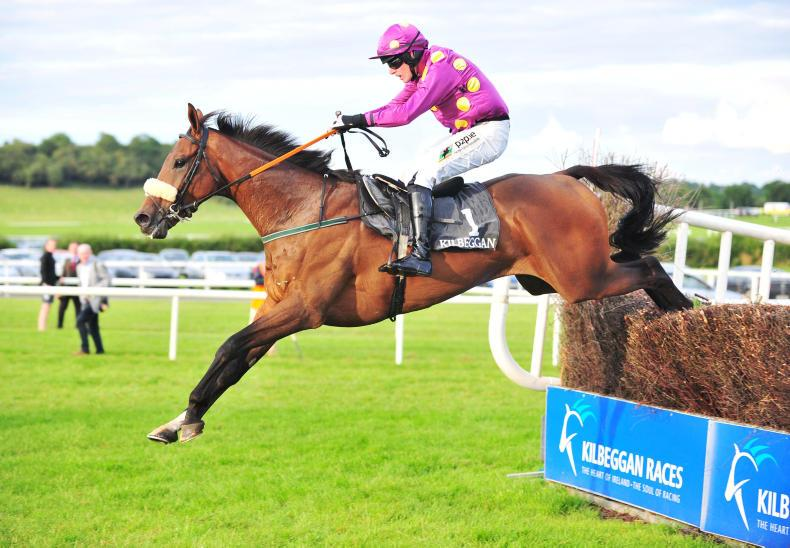 WEXFORD PREVIEW: Kenny's charge Rated a solid proposition