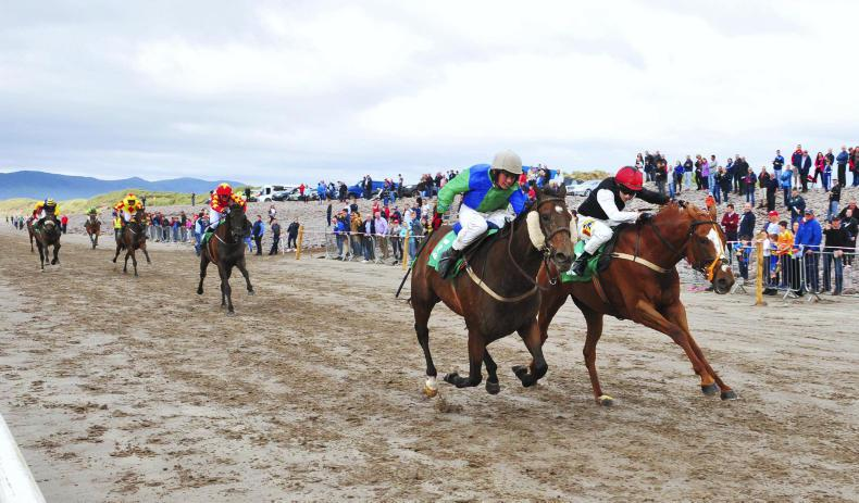 HORSE AND PONY RACING:  James just makes it under Slattery drive