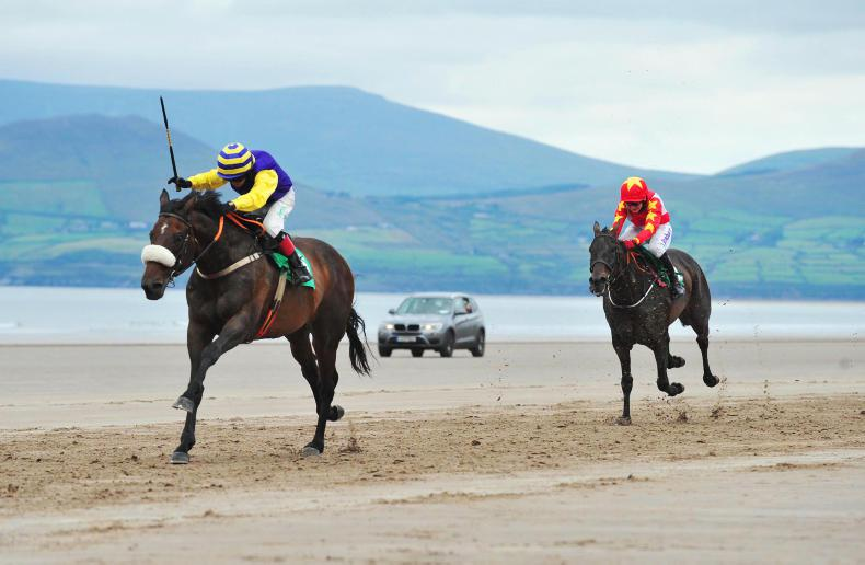 HORSE AND PONY RACING:  Browne-McMonagle delivers in Derby