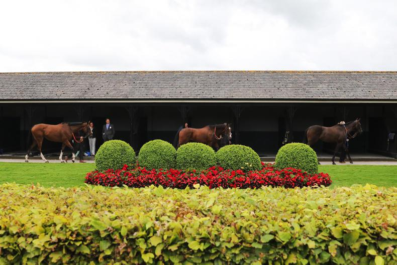 Champion innovations galore at the Curragh
