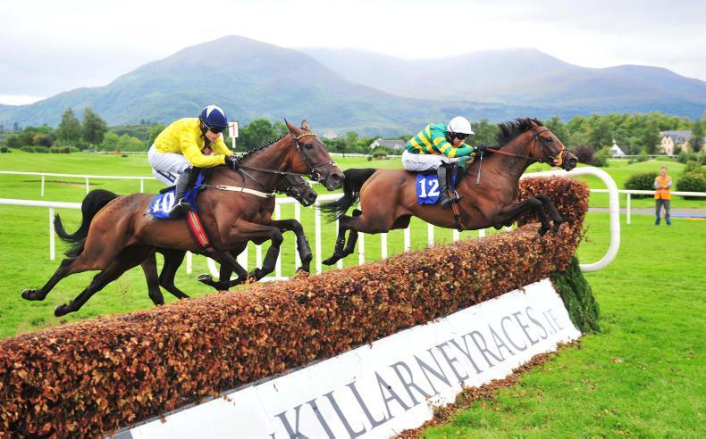 Killarney seeking extra fixture for 2018