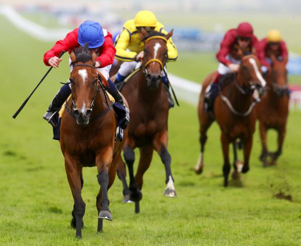Top racemares stand their ground in Matron Stakes
