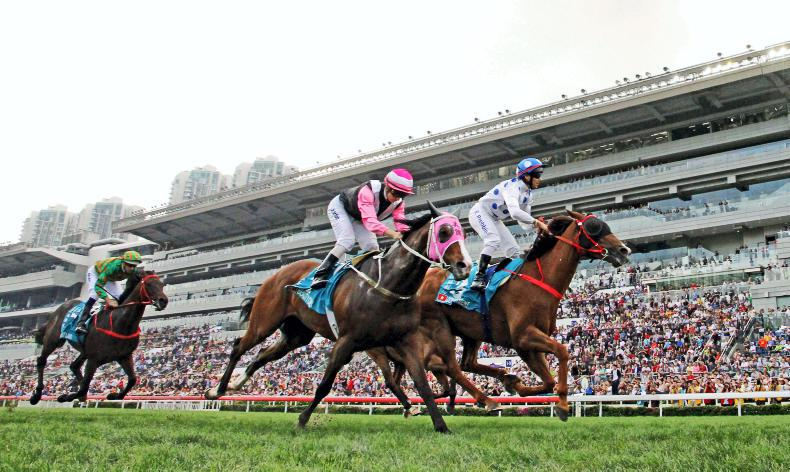 HONG KONG: Expert tips for Sha Tin on Sunday