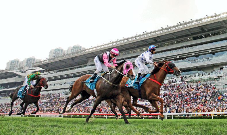 HONG KONG: Expert tips for Sha Tin on Sunday