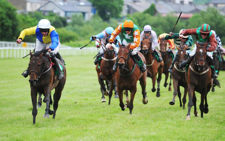 LISTOWEL PREVIEW: Be Swift to back Nicholson's mare back at Listowel