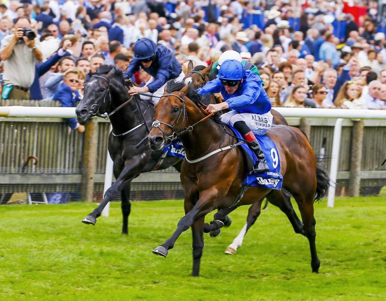 BRITISH PREVIEW: Torcello can cut down rivals at Ascot