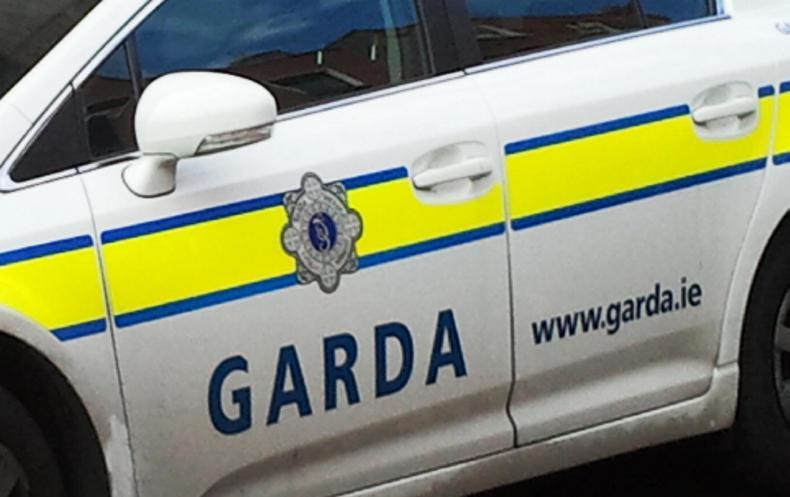 NEWS:  Stolen horses returned safely