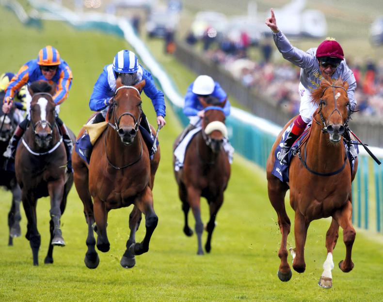 Galileo Gold to stand at Tally-Ho Stud