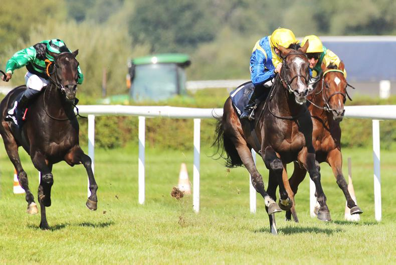 GERMANY: Minarik makes all on Guignol to land Group 1 Grosser Preis Von Baden