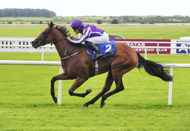 Hydrangea shocks Winter in Matron Stakes at Leopardstown