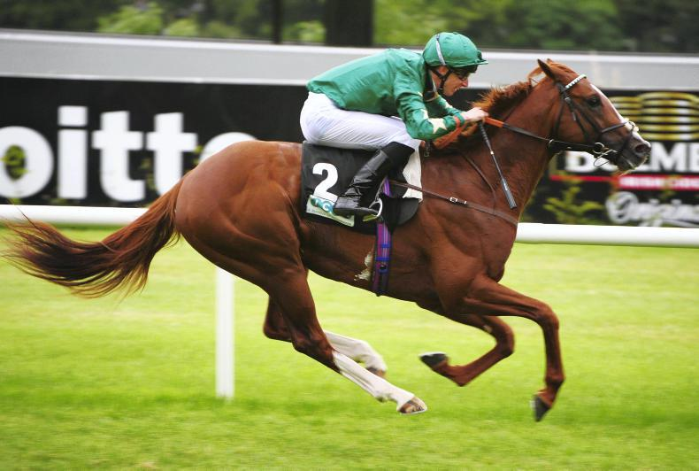 Decorated Knight claims top honours in Irish Champion thriller