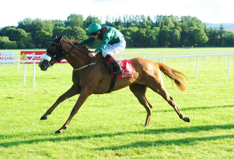 Nelson storms to victory as O'Brien juveniles dominate