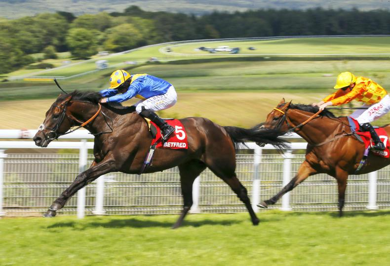 Ascot on the agenda for gallant Poet's Word