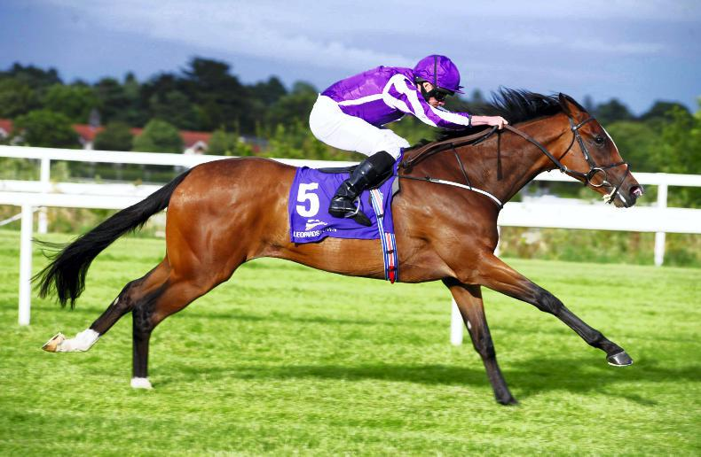 Happily leads home clean sweep in Moyglare for Aidan O'Brien