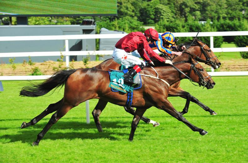 LEOPARDSTOWN SATURDAY: Suedois shines at a mile