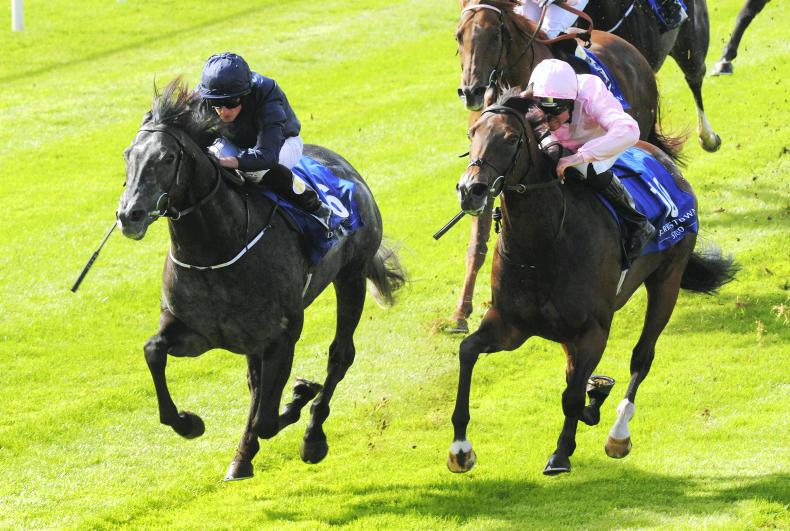 THE CURRAGH SUNDAY: Caravaggio back on track in Flying Five