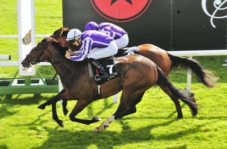 THE CURRAGH SUNDAY: Happy times for O'Brien clan