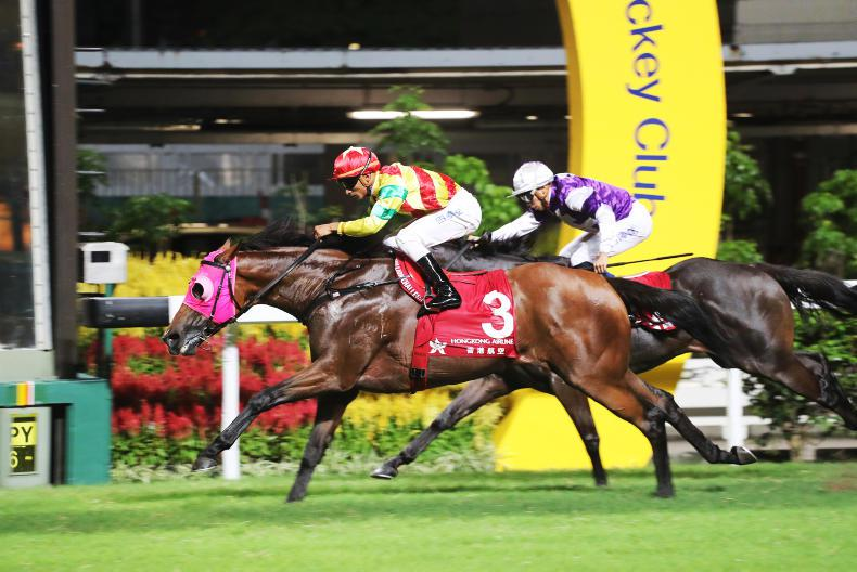 HONG KONG: Expert tips for Wednesday's Happy Valley card