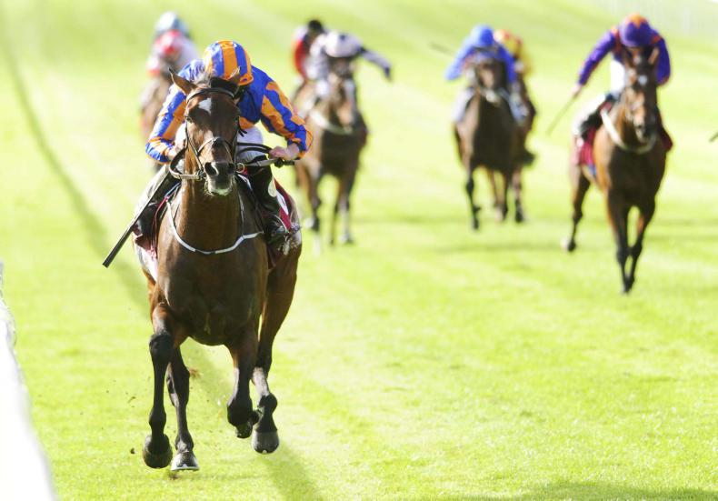 THE CURRAGH SUNDAY: Order restored for second St. Leger