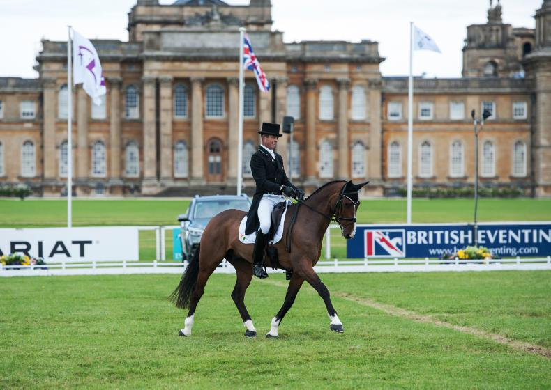 NEWS: Evans best of the Irish at Blenheim