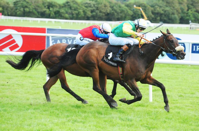 LISTOWEL FRIDAY:  Tip top Ted gets his head in front