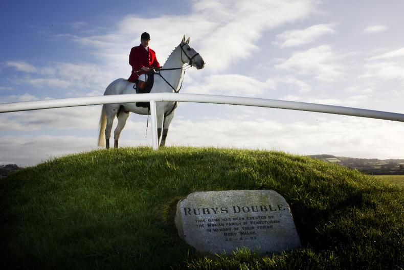 HORSE SENSE HUNTING: Win a day's hunting for two with the Kildare Foxhounds