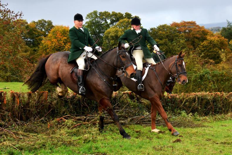 HORSE SENSE HUNTING: Feeding your hunter in preparation for the season