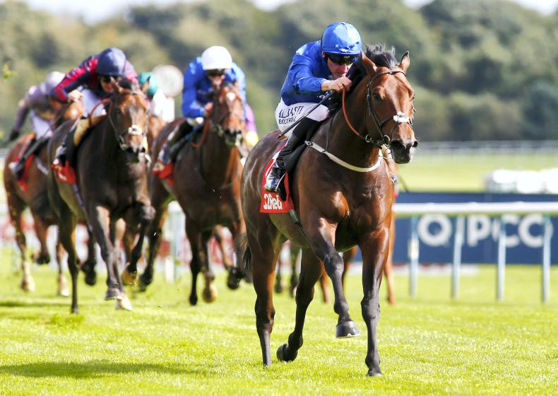 BRITAIN: Conditions no problem for brilliant Harry Angel
