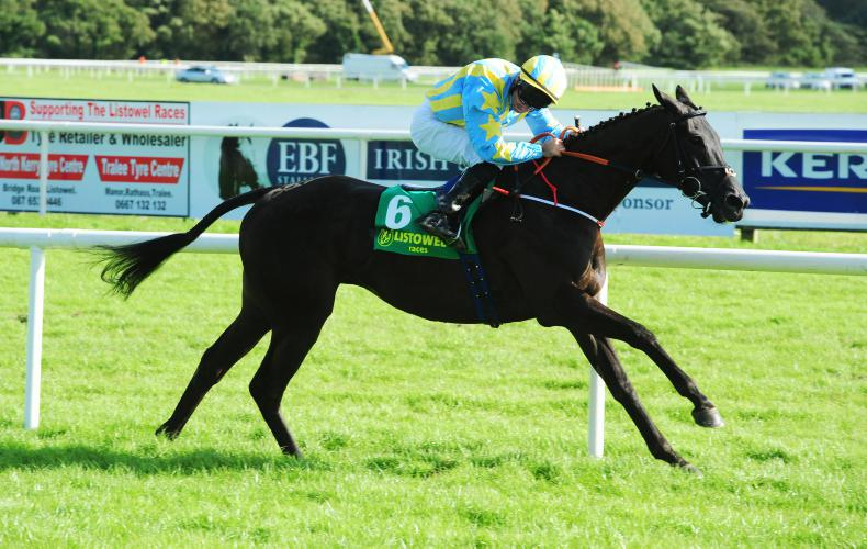 Highland Fling repeats Flat success with jumping glory at Listowel