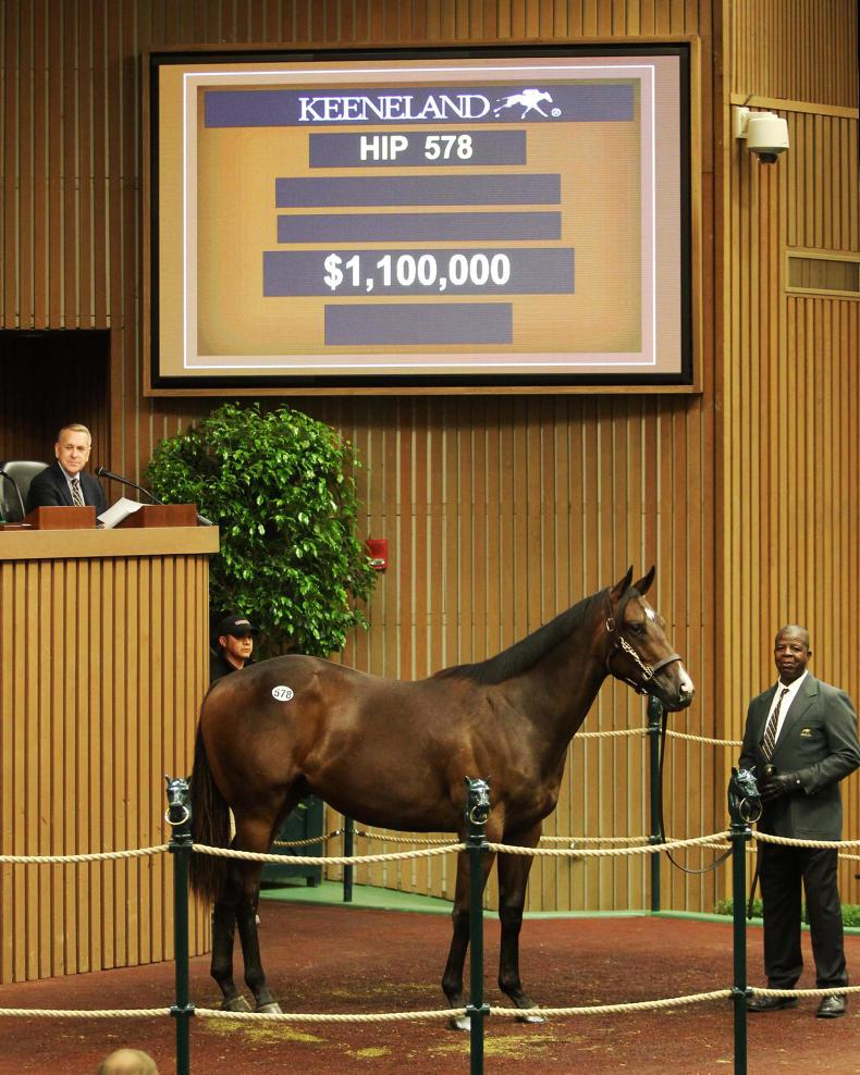Million-dollar yearlings keep on coming