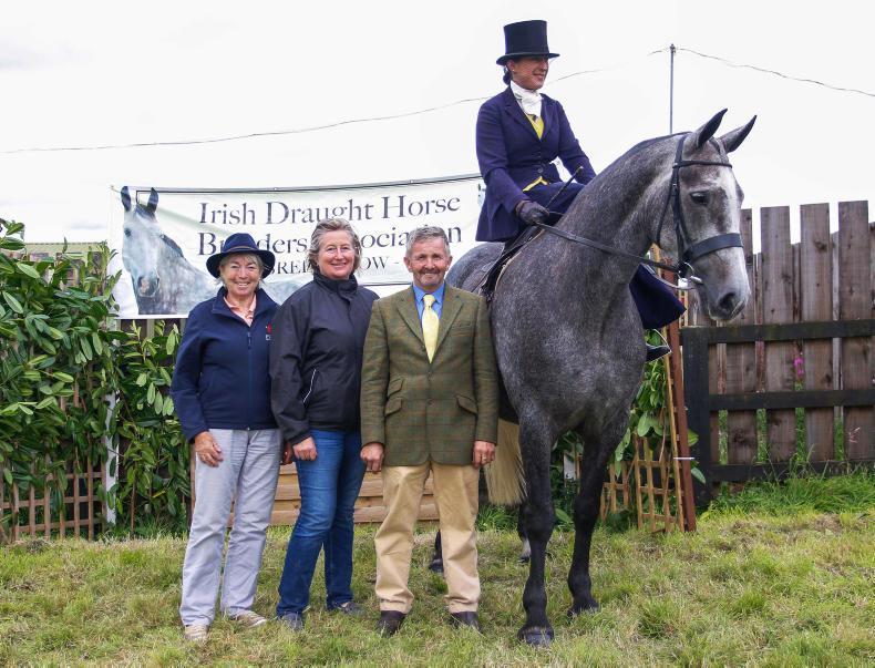 AROUND THE COUNTRY: All welcome at Irish Draught Horse one day event